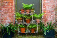 Walled Garden Stock Photos
