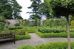 Walled Rose Garden in Yorkshire, England. stock images