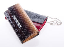 Wallet, Beautiful woman or lady wallet Royalty Free Stock Photo