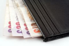 Wallet with Cash. Cash in an open wallet Stock Photography