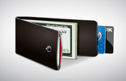 Wallet with cash and credit cards Stock Image
