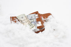 Wallet with cash in snow Royalty Free Stock Photo