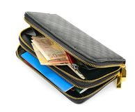 Wallet with documents and money Royalty Free Stock Photo