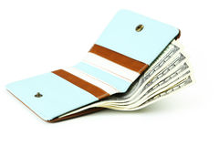 Wallet with dollars banknotes Stock Photography