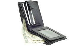 Wallet with dollars, clipping path Royalty Free Stock Photography