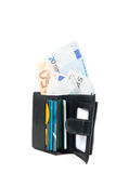 Wallet with euro and card. In white background Royalty Free Stock Images