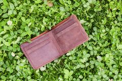 Wallet on grass. For your design. Bright Royalty Free Stock Photo
