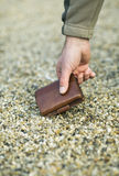 Wallet in hand Royalty Free Stock Photo