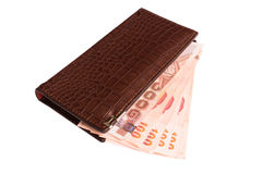 Wallet with money on isolated Royalty Free Stock Images