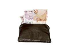 Wallet with Turkish lira Stock Image