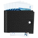 Wallet with twenty euro banknotes Royalty Free Stock Photo