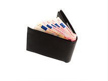 Wallet With Euro Stock Photography