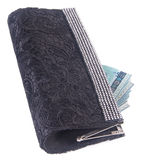 Wallet. woman wallet with money on a background Stock Photo