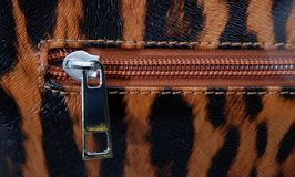 Wallet zipper Stock Images