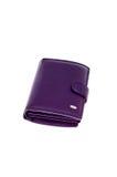 Wallet1 Imagem de Stock Royalty Free