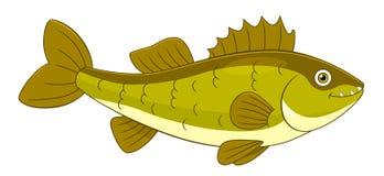 Walleye шаржа Стоковые Фото