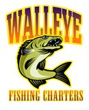 Walleye fish fishing charters Stock Photos