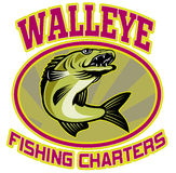 Walleye fish fishing charters Royalty Free Stock Photo