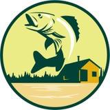 Walleye Fish Lake Lodge Cabin Circle Retro. Illustration of a Walleye (Sander vitreus, formerly Stizostedion vitreum), a freshwater perciform fish jumping with Royalty Free Stock Photo