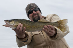 Walleye Fishing. Fisherman with a large Walleye Royalty Free Stock Photos