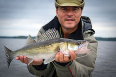 Walleye fishing season Royalty Free Stock Photo