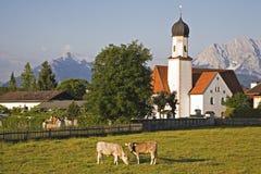 Wallgau Stock Images