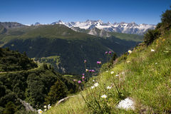 Wallis Alps Royalty Free Stock Photography
