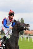 Wallisto - horse racing in Prague Stock Images