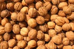 wallnut предпосылки Стоковые Фотографии RF