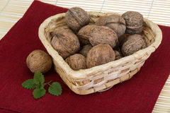 Wallnut in the basket Royalty Free Stock Images