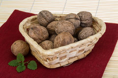 Wallnut in the basket Royalty Free Stock Image