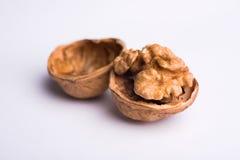 Wallnut macro isolated on white background Stock Images