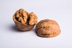 Wallnut macro isolated on white background Stock Photos