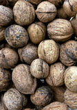 Wallnut pile. Food and ingredients. Royalty Free Stock Image