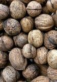 Wallnut pile. Food and ingredients. Royalty Free Stock Image