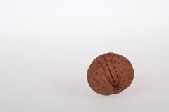 Wallnut on white background Stock Photos