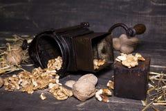 Wallnuts和手核桃研磨机 库存图片