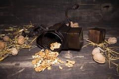 Wallnuts和手核桃研磨机 免版税库存图片