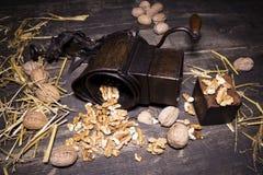Wallnuts和手核桃研磨机 库存照片