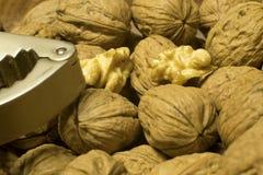 wallnuts 库存图片