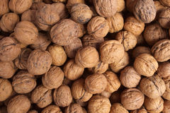 Wallnuts Royalty Free Stock Photo