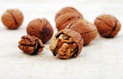 Wallnuts close-up Stock Photography