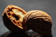 Wallnuts-Makroschüsse lizenzfreies stockfoto