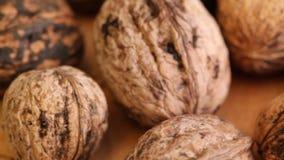 Wallnuts at rotating stand closeup stock footage