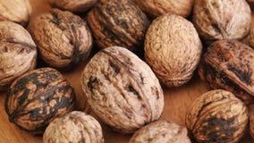 Wallnuts at rotating stand closeup stock video footage
