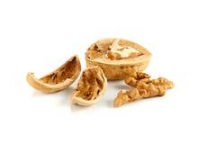 Wallnuts sur le blanc Image libre de droits