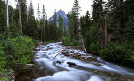 Wallowa flod (den västra gaffeln), Oregon, USA Royaltyfri Foto