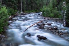 Wallowa River (West Fork), Oregon, USA Stock Image