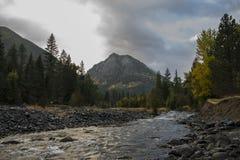 Wallowa Stream Royalty Free Stock Photos