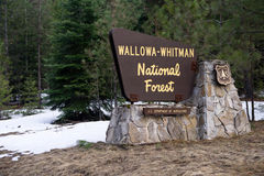 Wallowa Whitman Natinal Forest Entry Sign Boundary Oregon State Stock Photos
